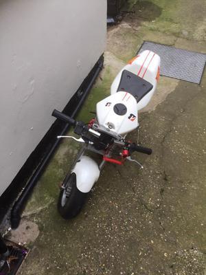 Mini moto 50cc motor bike £70 ono