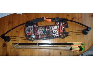 Archery Set ~ Banshee Junior Set complete with 17 Arrows.