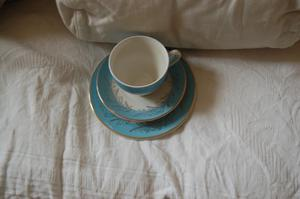 Blue Riband Ironstone Washington Pottery Ltd 6 tea cups saucers and plates