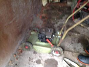 Hayter Rough cut petrol lawn mower