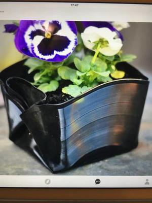 Recycled vinyl record plant pot