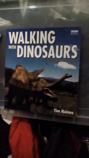 Dinosaurs Creepy Crawlies Etc Posot Class
