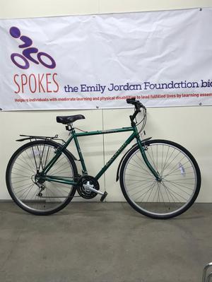 Raleigh Pioneer Men's Hybrid Bike