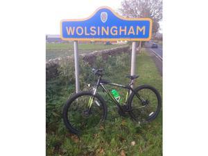 mens diamond back descent mountain bike in Durham