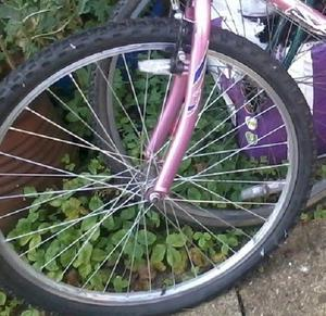 """Bike Wheels 26"""" (Tyres Included) One Front, One Back (Price Is For Both)"""