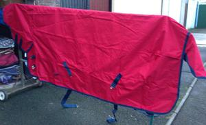 Turnout Rug Clear Out
