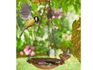 hanging bird bath in Leicester