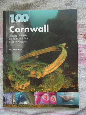 100 best dives in cornwall