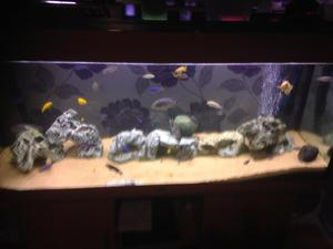 4ft juwel fish tank and stand