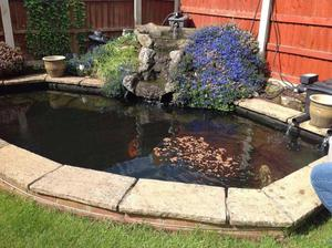 Pond waterfall rockslate effect posot class for Garden pond without fish