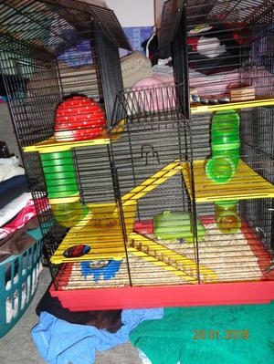 Hamster, Cage and accessories.
