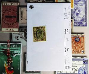 Edward VII Transvaal 5/- black&purple/yellow mint og  Tr
