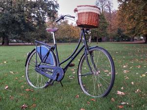 Vinatage Classic Restored Gazelle Bike Dutch Bike Brooks
