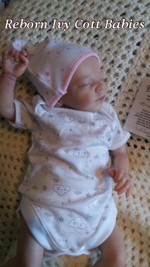Reborn Baby Denvor Rose by Marita winters Limited edition