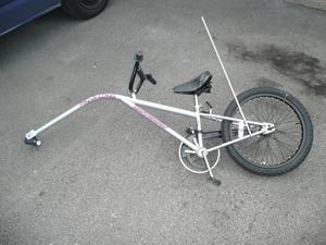 Universal Tag Along Bike