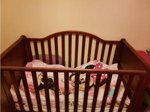 Cot beds in Lanark