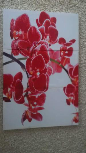 Set of 3 Large Floral Canvases (£15ono)