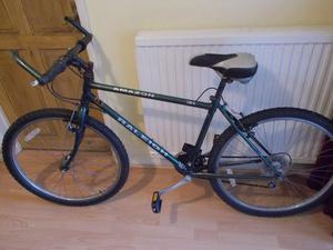 Raleigh Amazon Mountain Bike
