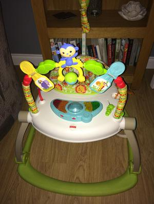 Fisherprice Bounce And Spin Froggy In Posot Class