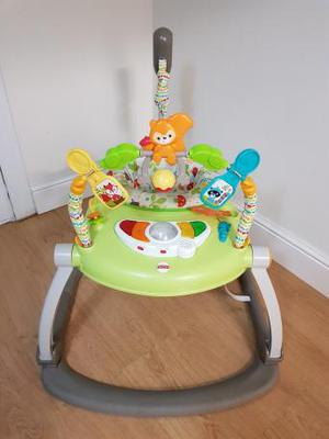 Fisher Price Rainforest Friends