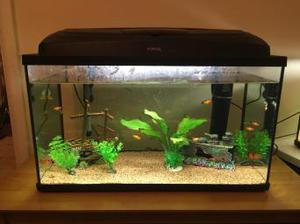 TROPICAL FISH TANK ALL INCLUDED