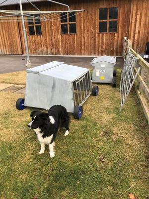 Four foot lamb creep feeder for sale as new condition
