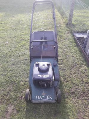 Hayter Harrier 48 rotary mower