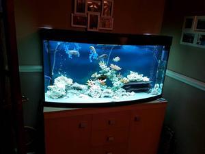 juwel vision 450 posot class. Black Bedroom Furniture Sets. Home Design Ideas