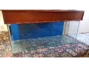 Aquarium/Vivarium and Cabinet For Sale (4FTX2FT) in Swansea