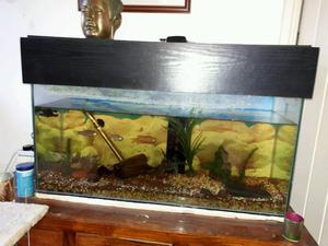 Glass fibre fish tank large inches long posot class for Wide fish tank