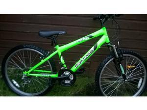 kids samurai reflex mountain bike in Dudley