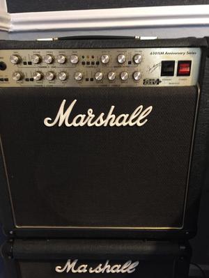 Marshall AM combo amp