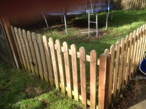 7 Fence Panels, Posts and a Gate £80