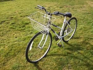 Raleigh Pioneer Spirit ladies bike with shopping basket