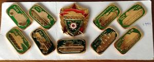 A collection of Russian pins from