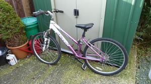 Laddies mountain bike