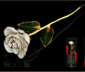 Real white rose dipped 24k gold genie Dubai