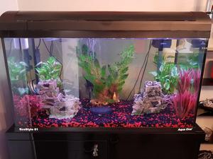 Black Aqua One EcoStyle Ltr Aquarium