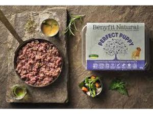 Ensure Your Pet's Health With Natural Dog Food in Uckfield