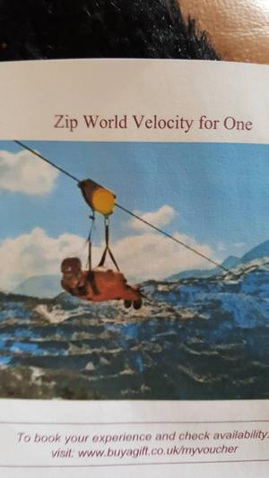Zip World Velocity Experience For One