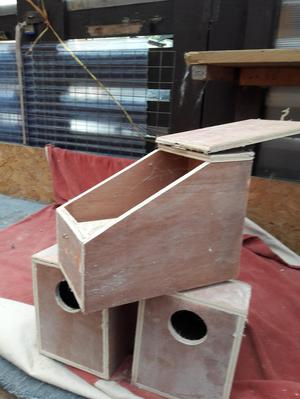 budgie nest boxes +