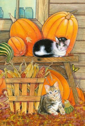 """Toland Home Garden Pumpkin Patch Kittens 12.5x18"""" Fall Kitty"""