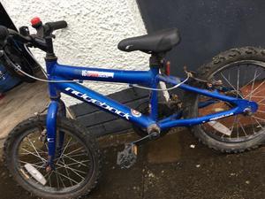 Ridgeback MX16 Kid's Bike