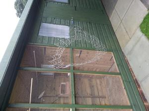 14 ft x 4ft Aviary for sale