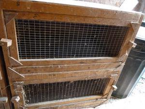 2 x breeder blocks of 2 hutches rabbit guinea pig