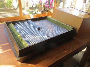 incubator for sale