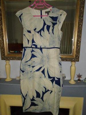 Blue and Cream Dress