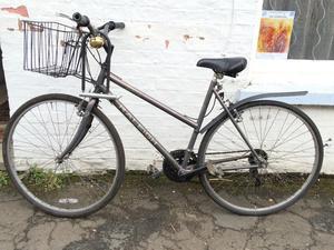 Ladies metallic vintage Raleigh Pioneer Bike