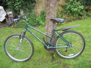 Ladies Raleigh Genesis Mountain Bike