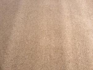 "Piece of Carpet 76"" x 67"" see ALL photos, good quality - nev"